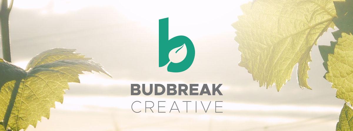 Budbreak Creative Web Design Development Partners Vinnow